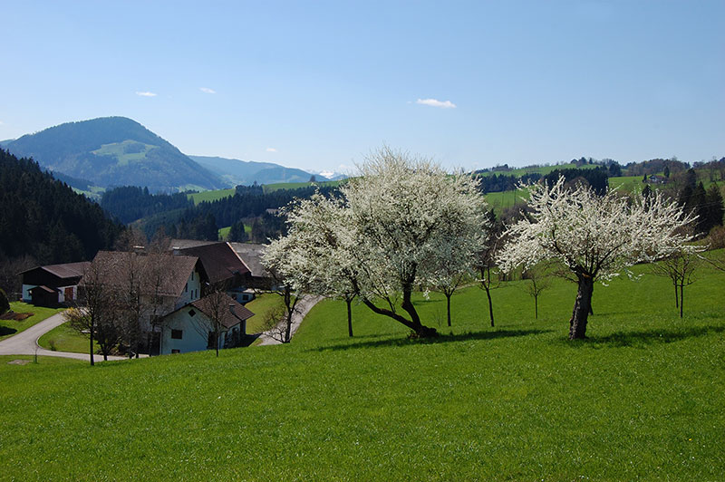 Mostviertel - hiking destinations in Austria