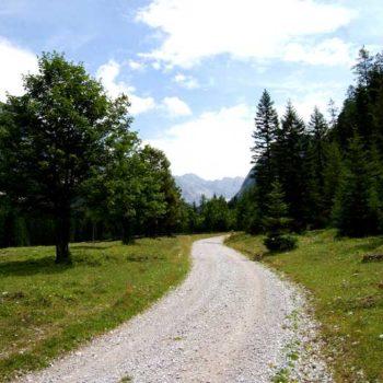 tractor trip, Seefeld, Tyrol, Austria