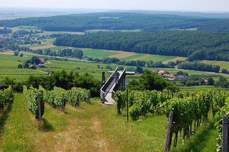 Fantastic viewpoints, Weinblick Eisenberg, Burgeland, Austria