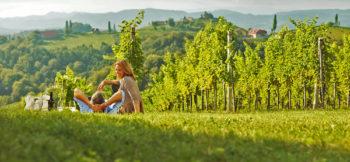 wine holidays in Austria