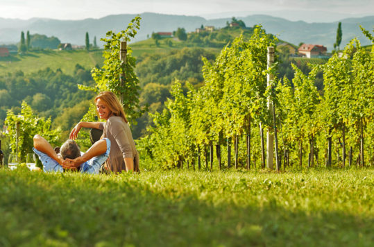 wine holidays in Austria