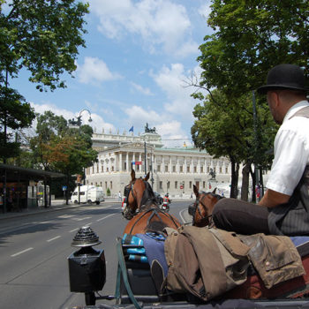 Fiaker horse carriege on Ringstrasse in Vienna, Travel destination Austria