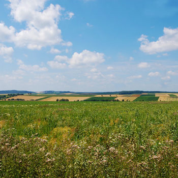 Slow travel in Southern Burgenland, Austria