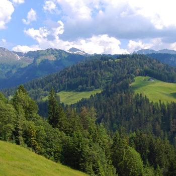 Bregenzerwald, Vorarlberg, Austria