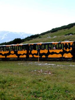 The salamander train arriving on Schneeberg, Austria