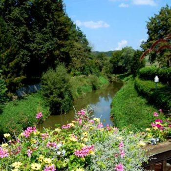 Safen creek, Bad Waltersdorf, Styria, Austria