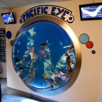 Haus des Meeres (aquarium) in Vienna, Austria