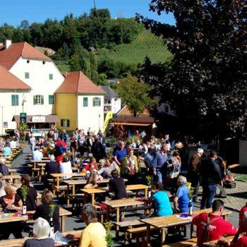 Wine harvest party in Klöch, Styria, Austria