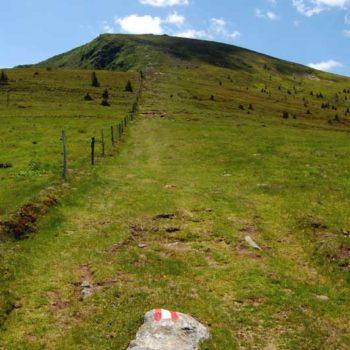 Trail heading up and ridge at Weinebene - Styria and Carinthia in Austria