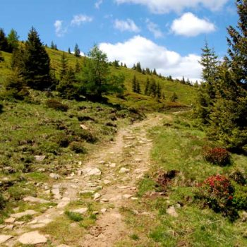 The trail towards Grosshöllerhütte