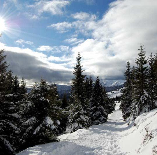 Snowshoe hiking at Weinebene - Styria and Carinthia in Austria