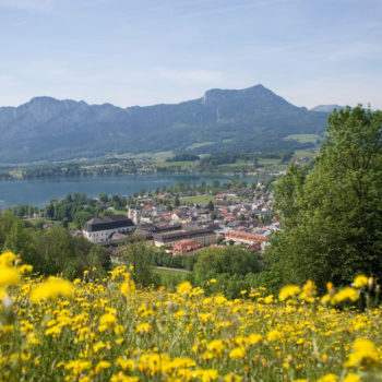 Fantastic view of the lake Mondsee and the small town